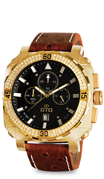 Dino Exclusive watch